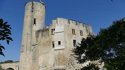 Donjon du château de Rauzan