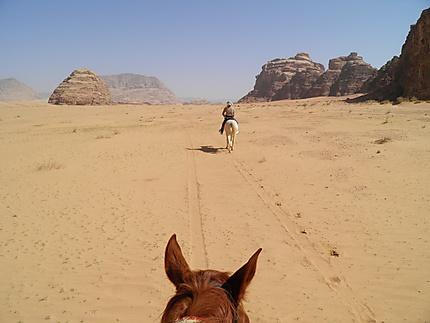 A cheval dans le Wadi Rum