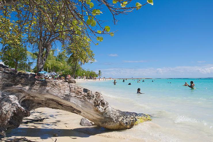 La Guadeloupe, sous le soleil des tropiques