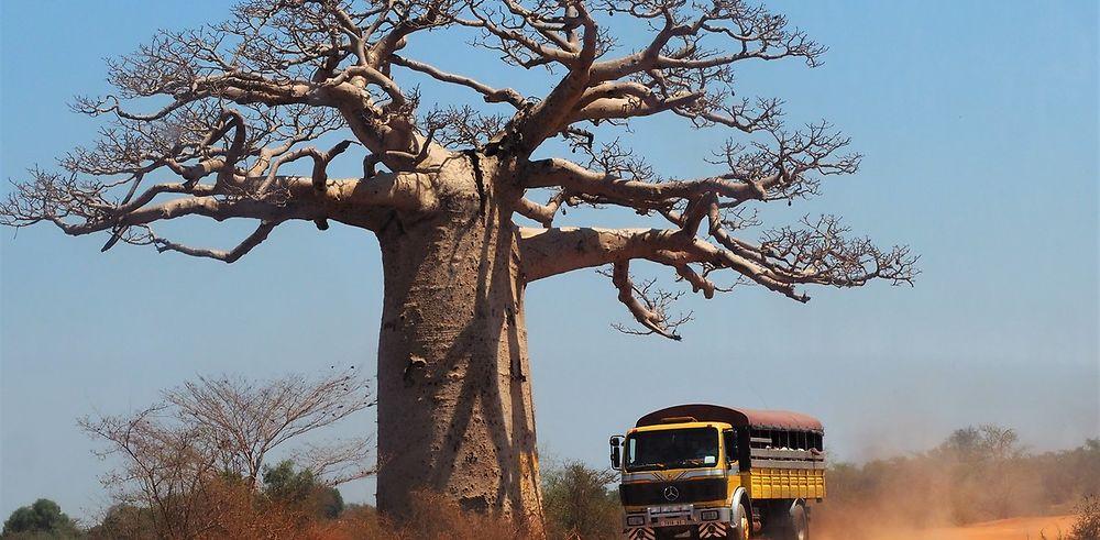 4 semaines en 4x4 à Madagascar