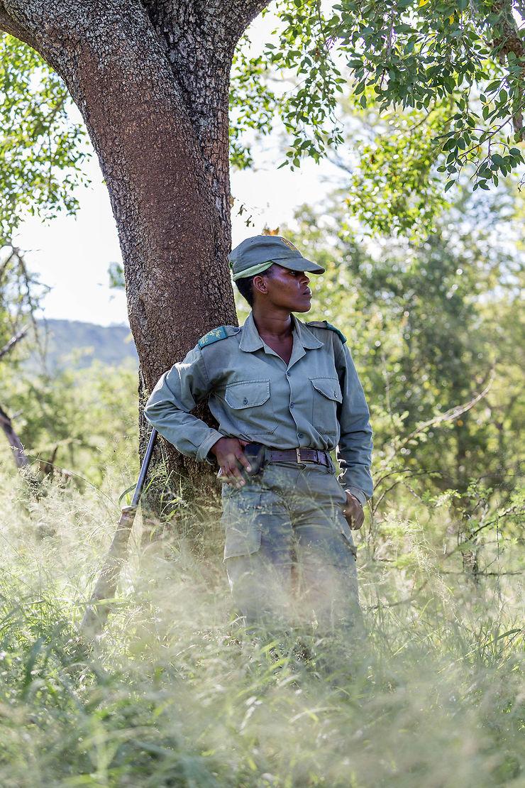 Immersion dans la brousse africaine