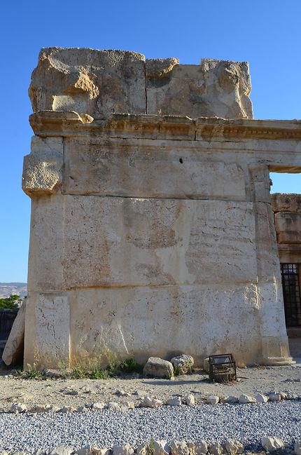 Le château des lions , panthères et aigles