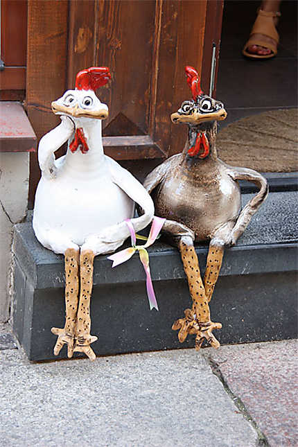 Les poulettes de Vilnius