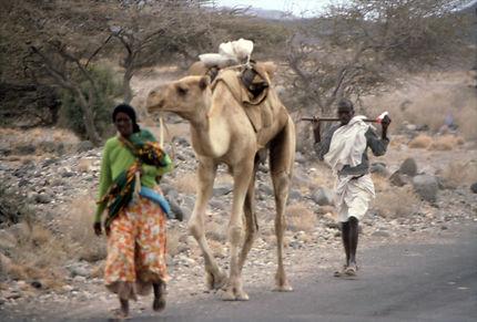 Couple de nomades Afars avec leur dromadaire