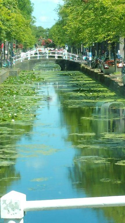 Zénitude et vue sur les canaux de Delft, Pays-Bas