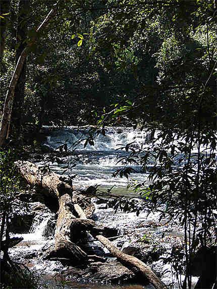 Rivière au fond d'un ravin