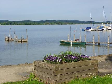 Lac de Constance à Markelfingen