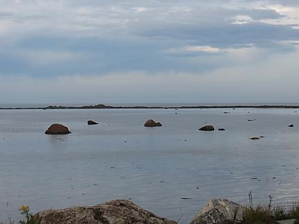 La Mer à Rimouski