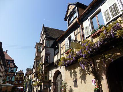 Rue fleurie à Riquewihr, Alsace