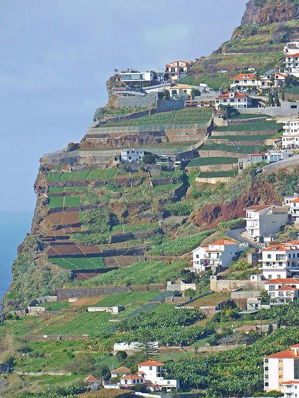 Cabo Girao - Maisons et jardins suspendus