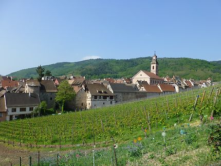 Vue sur le village depuis les coteaux, à Riquewihr