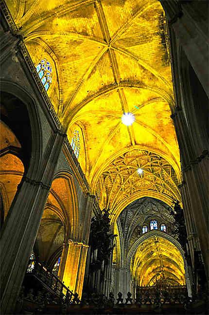 Le plafond de la Catedral
