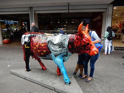 Vache à San José