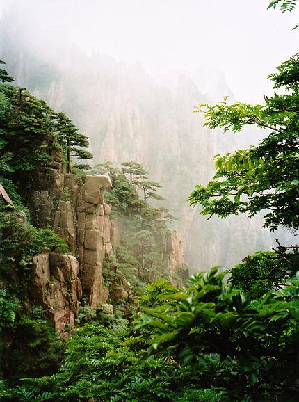 Huang shan monts dans la brume