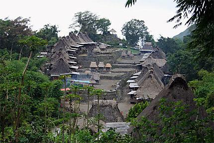 Maisons traditionnelles Ngada au village de Bena