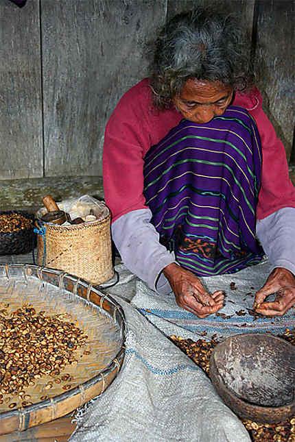 Femme qui trie le café au village de Luba