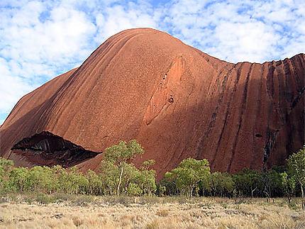 Baleine australe Uluru
