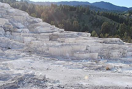 Terrasses de Mammoth hot spring