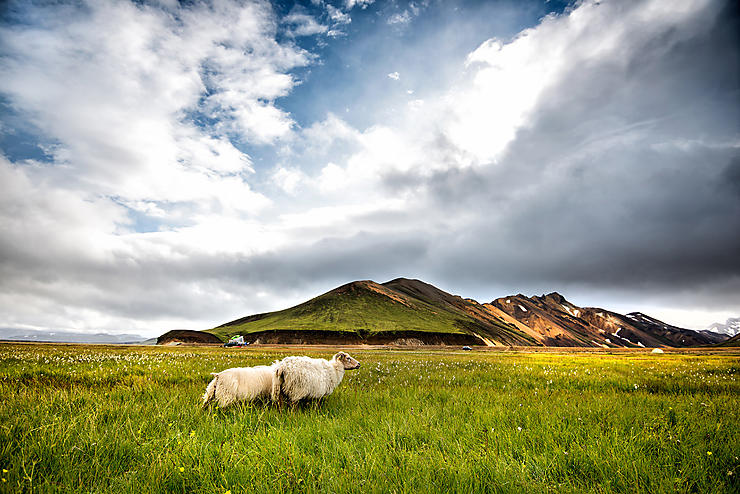 Tourisme - Camping en Islande : comment s'y prendre ?