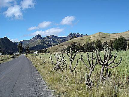 Route à Quilotoa
