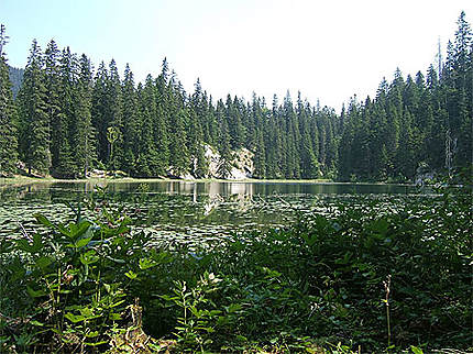 Parc National de Durmitor