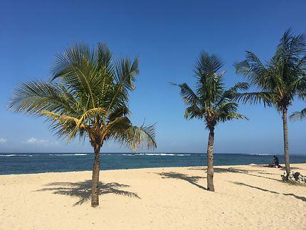 Bali île magique