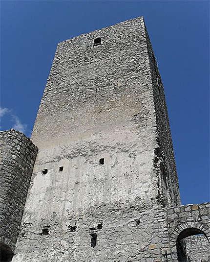 Donjon du château de Strecno