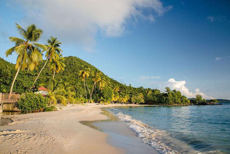 Covid-19 - Martinique : motif impérieux exigé pour les non vaccinés