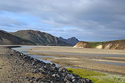 Sauvage Islande