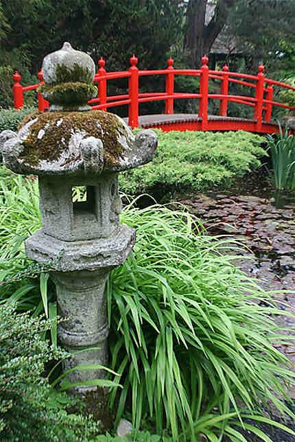 Magnifique jardin japonais
