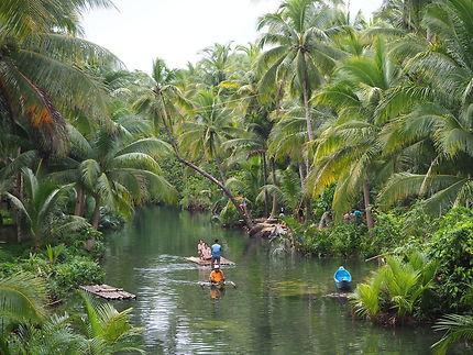 Siargao, l'île aux palmiers