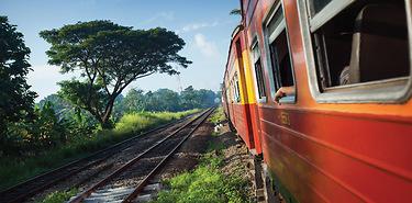 Découverte express au Sri Lanka/8j -Voyage en direct