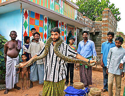 Chercheurs de serpents en Orissa (Inde)