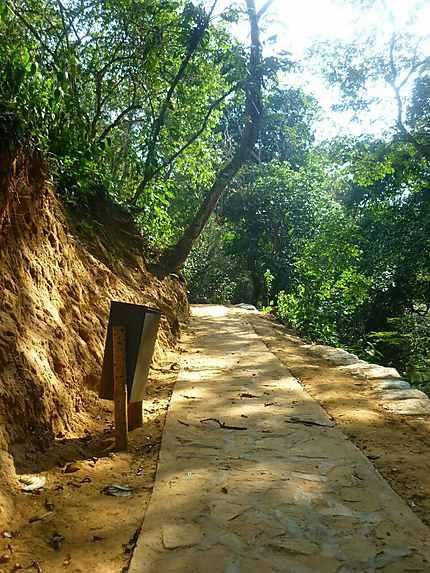 CURiti Colombia cerca de San Gil