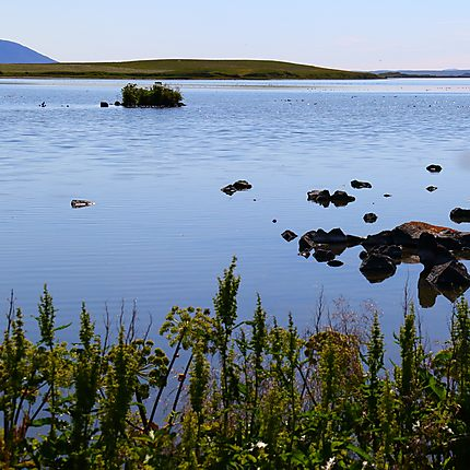 Lac de Myvatn