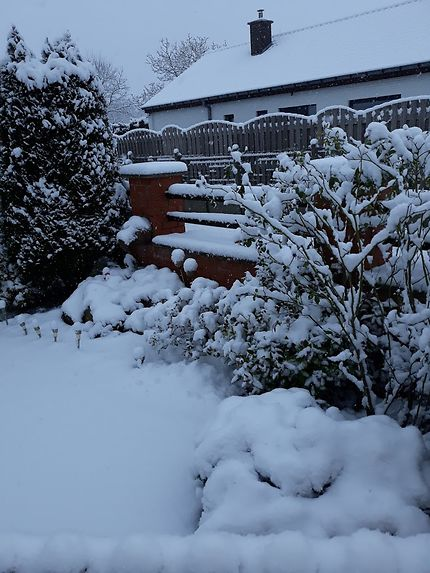 A Ellezelles, la neige recouvre les jardins