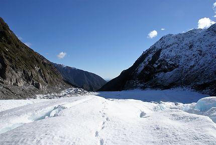 Nouvelle Zélande Fox Glacier