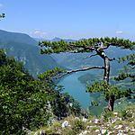 Vue sur la Drina