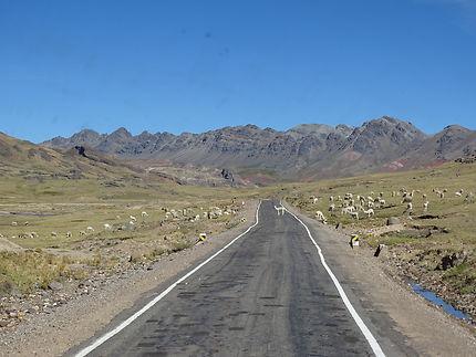 Au coeur des andes péruviennes