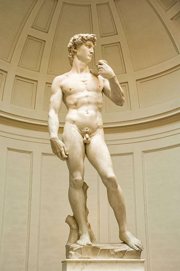 Admirer les fesses de David à l'Accademia