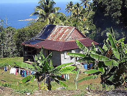Maison du territoire caraïbe