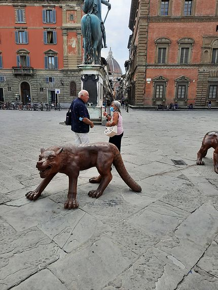 Firenze Les Loups