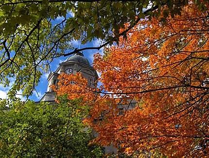 Feuillage d'automne à Québec