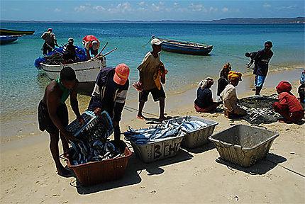Retour de pêche à Ramena