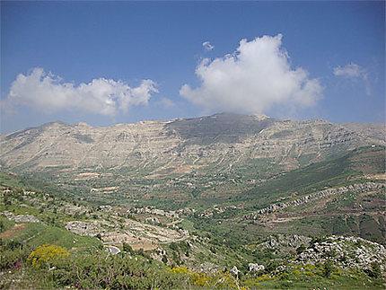 Paysage libanais