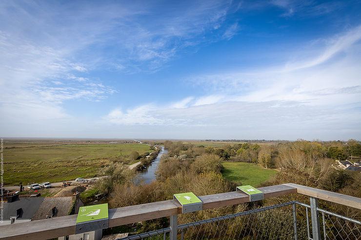 Loire-Atlantique - Le marais de Brière vu du ciel depuis le belvédère de Rozé