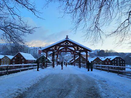 Gamle Bybro à Trondheim