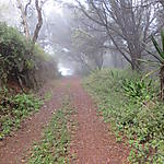 Chemin vers le Monte Gorde