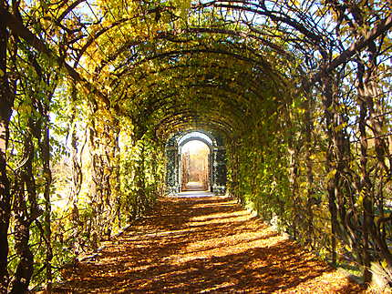 Jardins du palais de Schonbrünn