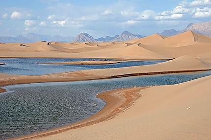Une plage dans le désert